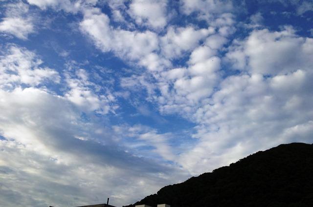 20140830bl15.jpg